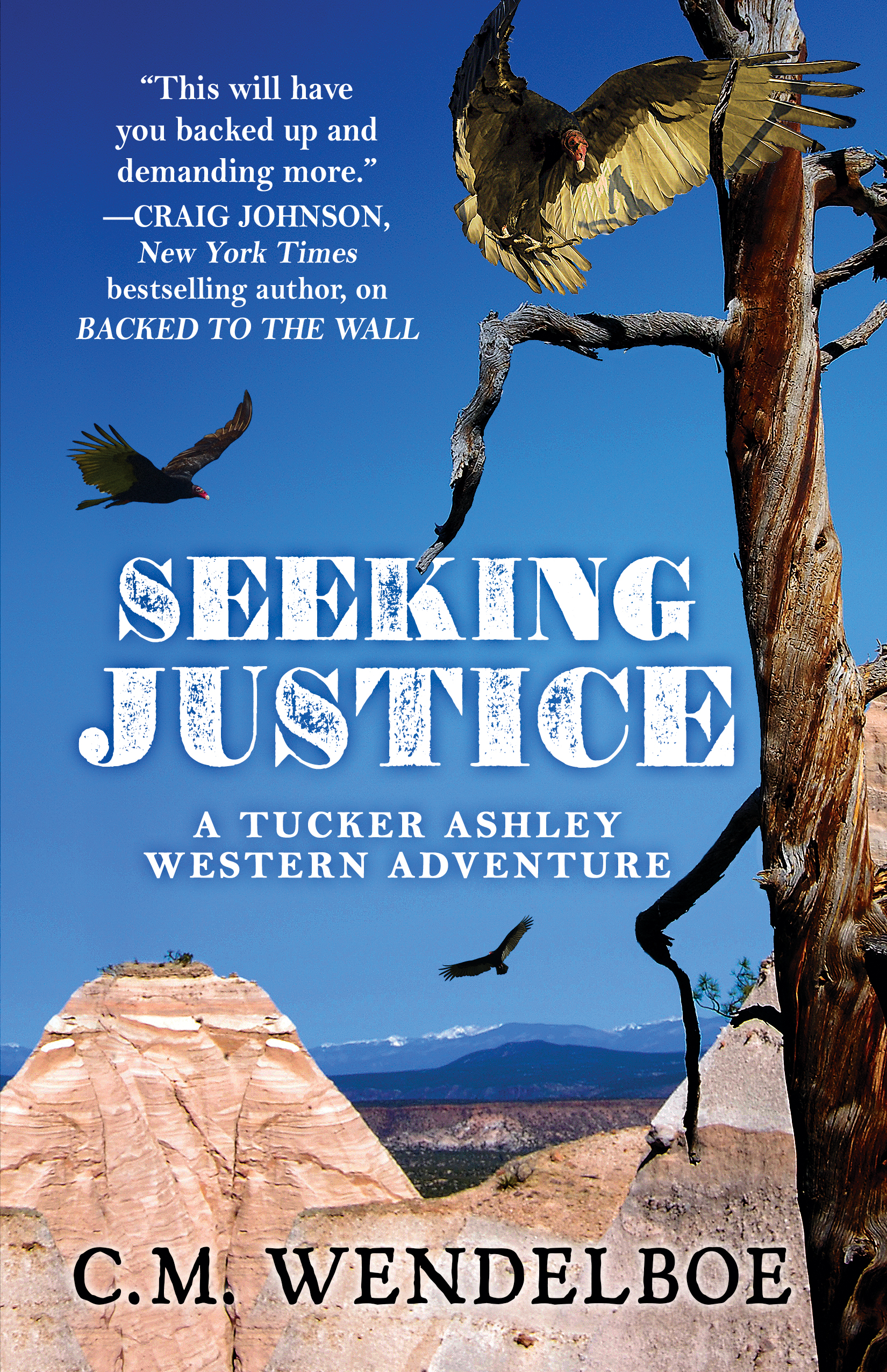 Seeking Justice by C. M. Wendelboe (Front Cover)